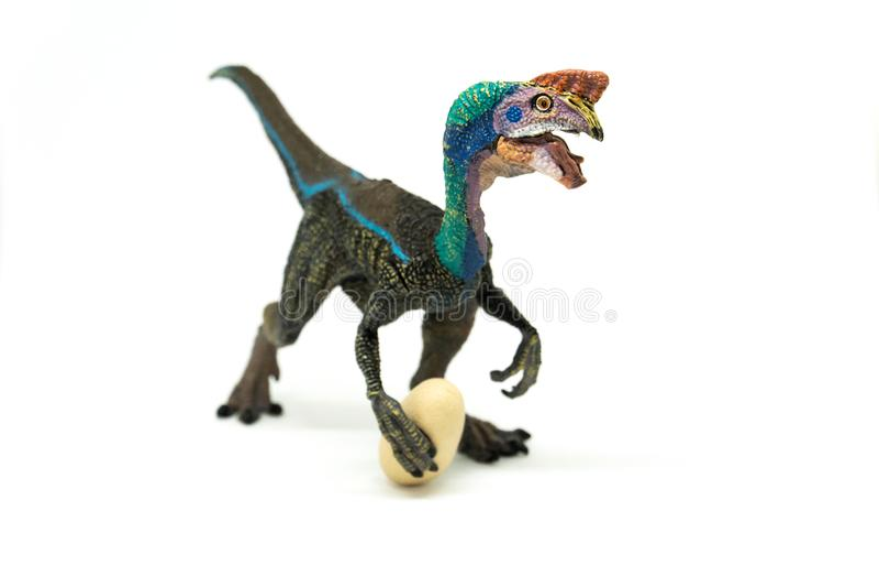 Oviraptor с украденным яичком на белой предпосылке стоковое изображение