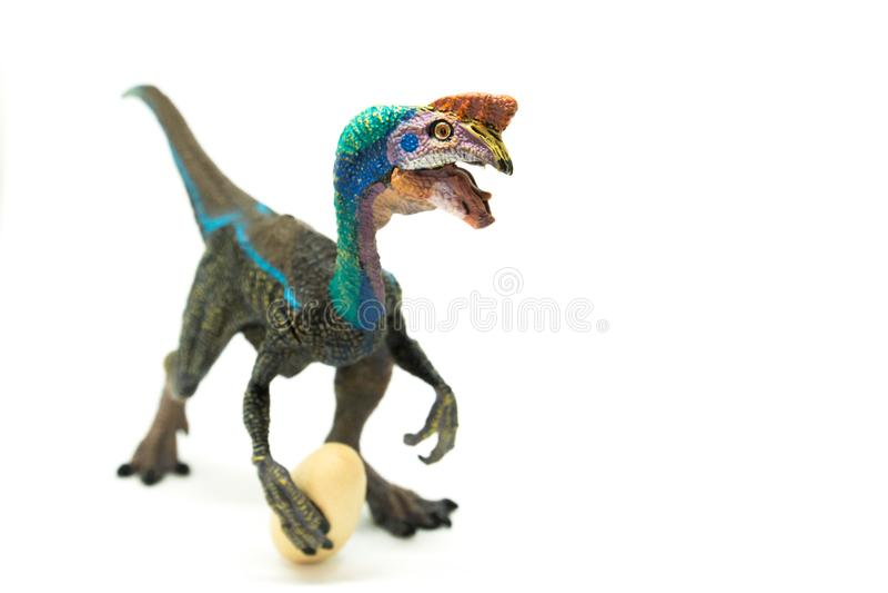 Oviraptor с украденным яичком на белой предпосылке стоковое фото