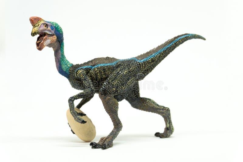 Oviraptor с украденным яичком на белой предпосылке стоковое изображение rf
