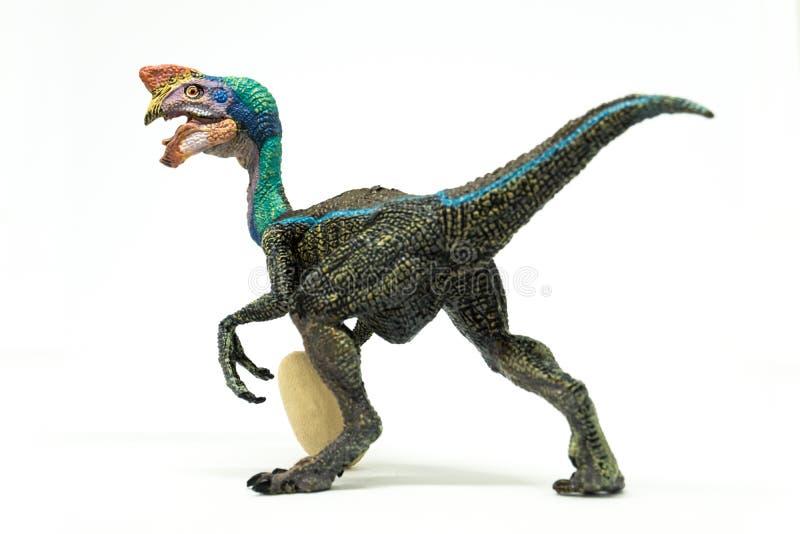 Oviraptor с украденным яичком на белой предпосылке стоковые изображения