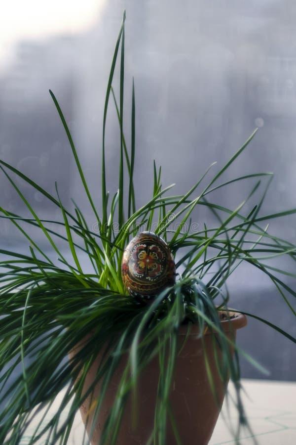 Ovo com um teste padrão feito a mão em uma grama verde, planta do preto da Páscoa fotos de stock
