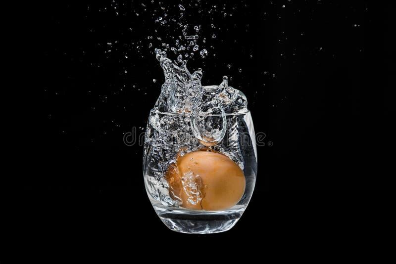 Ovo da galinha, caindo em um vidro com água imagens de stock royalty free