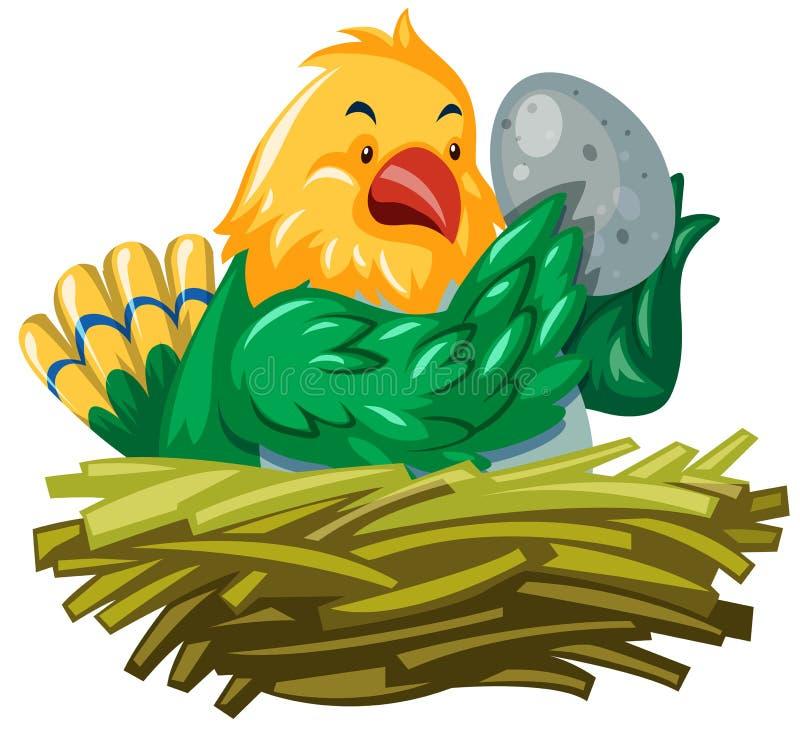 Ovo de choque do pássaro no ninho ilustração royalty free
