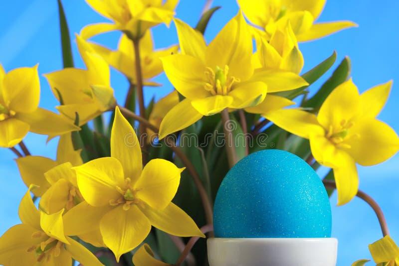 Download Ovo De Easter Azul E Tulips Amarelos Foto de Stock - Imagem de bouquet, frescor: 12809472