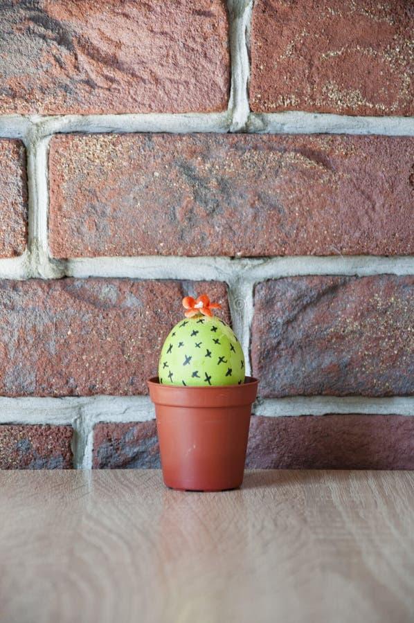 Ovo de Easter Vida verde Loja de flor Easter feliz Tintura natural Caça do ovo cozinhar Ideia incomum DIY e feito a mão Ovo pinta fotos de stock
