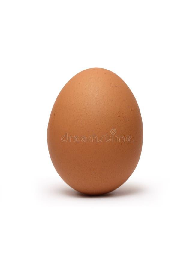 Ovo de galinha de Brown fotos de stock