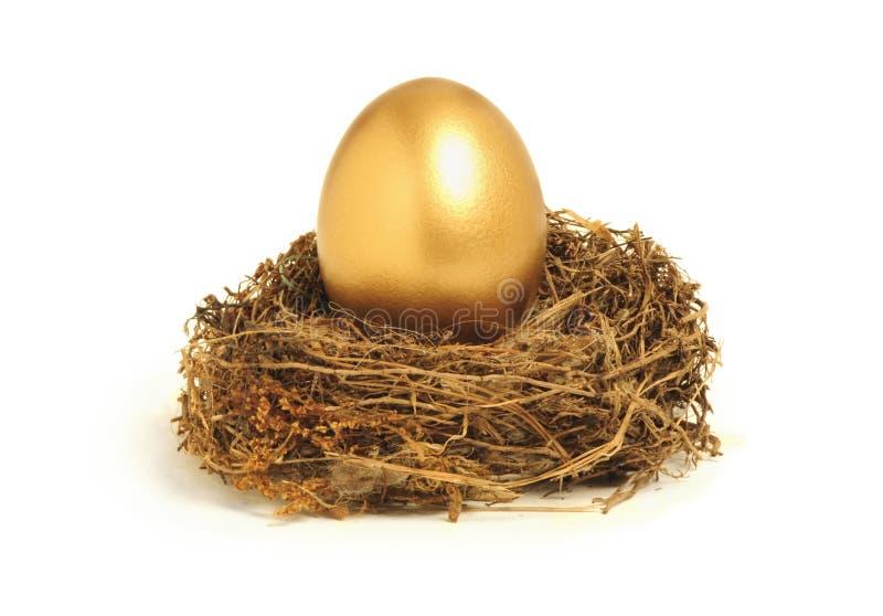 Ovo de ninho dourado que representa economias da aposentadoria imagem de stock royalty free