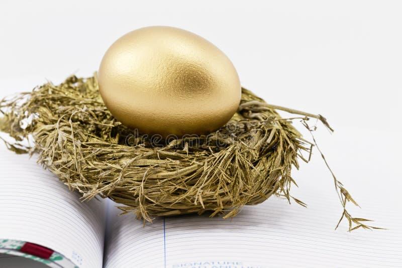 Ovo de ninho financeiro no livro- aberto fotografia de stock royalty free