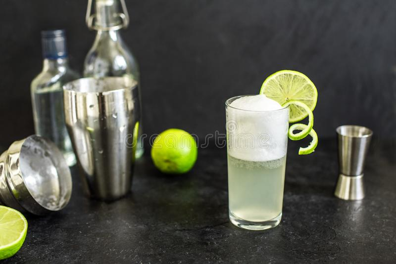 Ovo Gin Fizz Cocktail foto de stock royalty free
