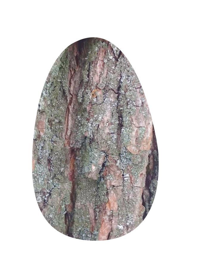 Ovo Textura de madeira fotografia de stock royalty free