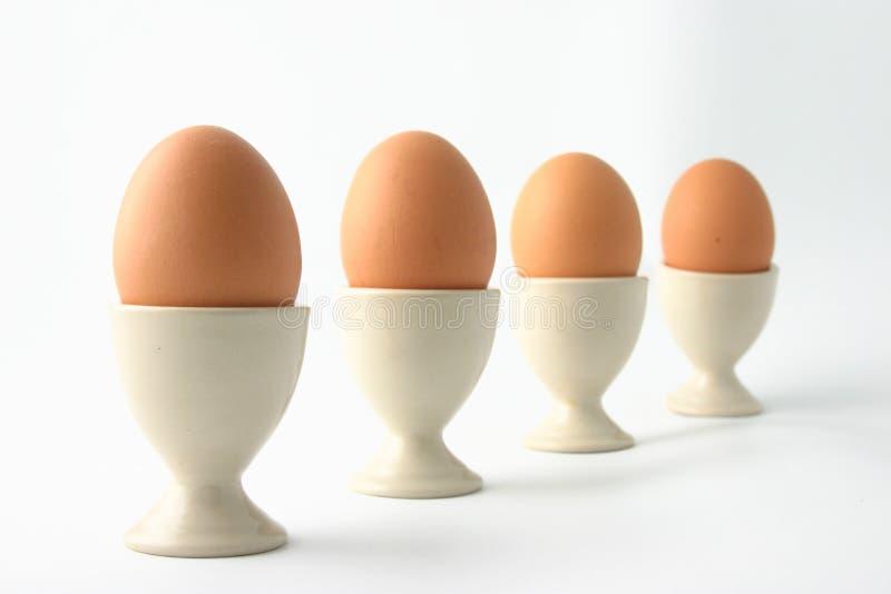 Ovos imagem de stock royalty free