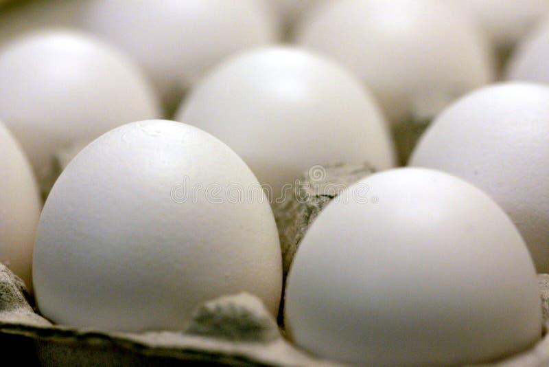 Download Ovos imagem de stock. Imagem de breakfast, branco, redondo - 50927