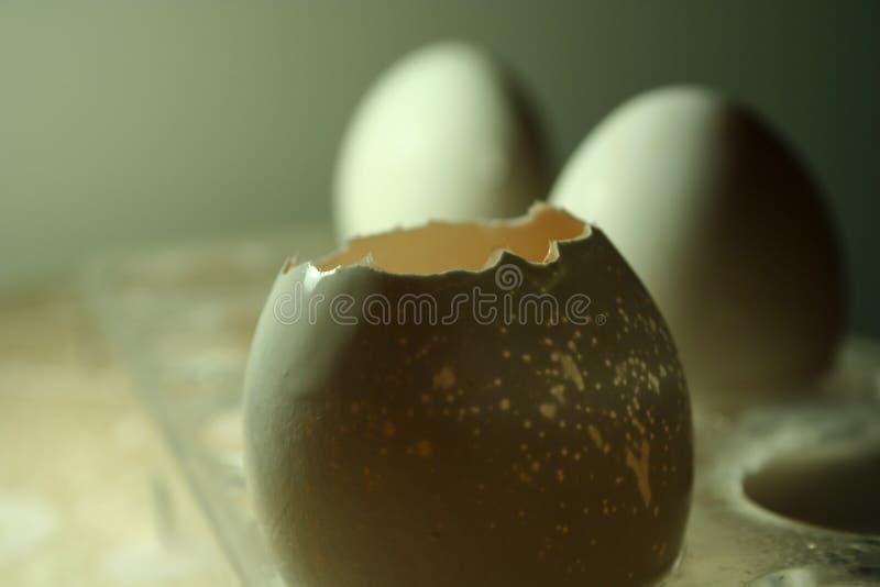 Ovos & pell imagem de stock royalty free