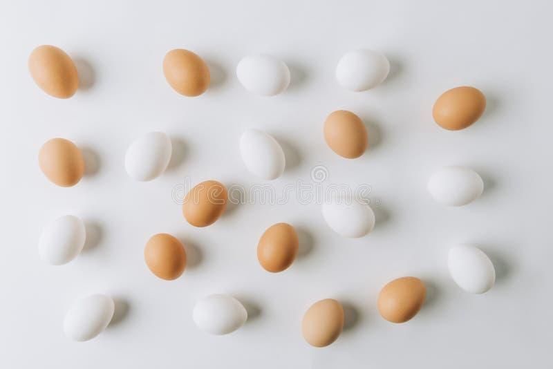 ovos brancos e marrons dispersados fotos de stock royalty free