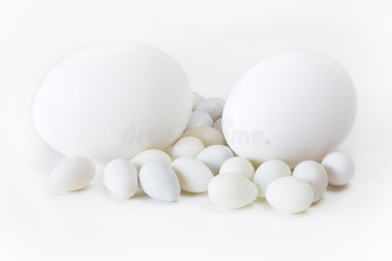 Ovos com fundo branco fotografia de stock royalty free