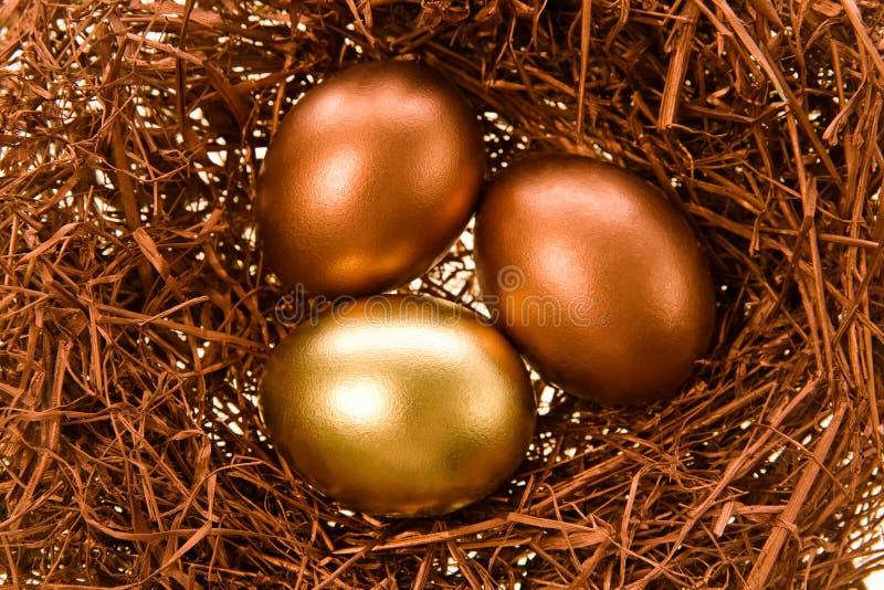 Ovos comemorativos imagem de stock