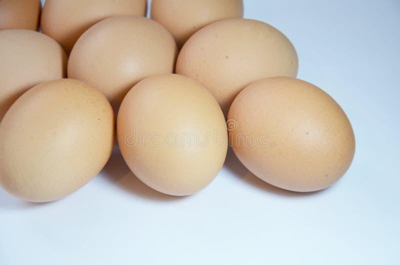 ovos crus da galinha, ovos da páscoa, fotografia de stock