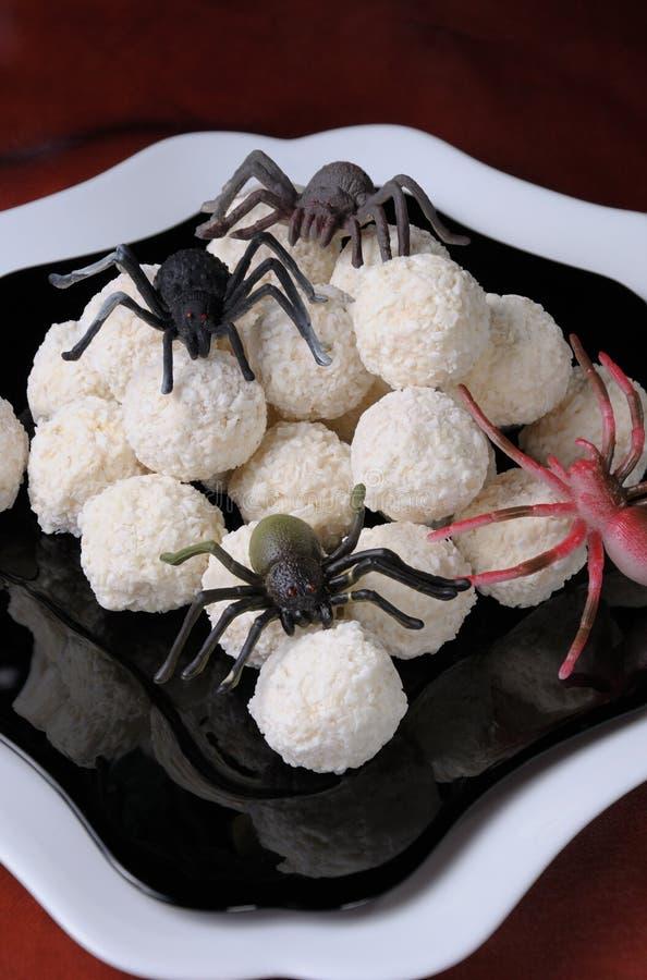 Ovos da aranha imagens de stock royalty free