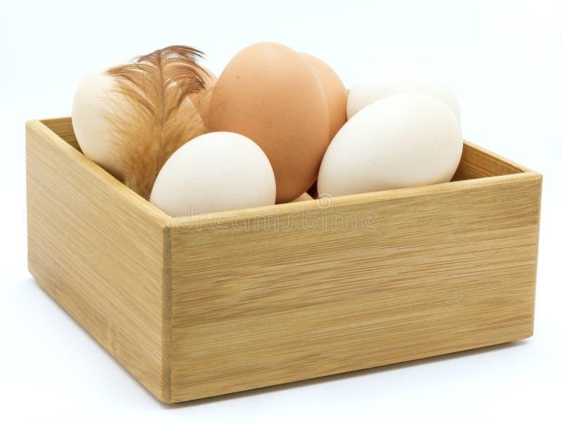 Ovos da galinha, pena, caixa de madeira imagem de stock royalty free
