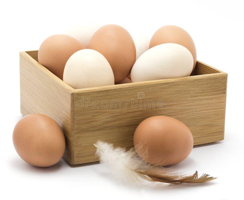 Ovos da galinha, pena, caixa de madeira fotografia de stock royalty free