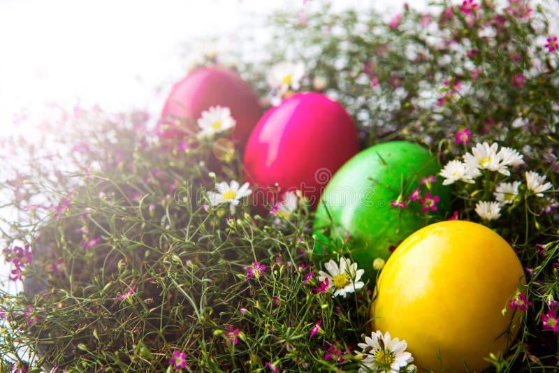 Ovos da páscoa coloridos imagens de stock