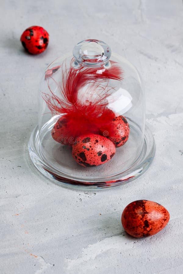 Ovos da páscoa coloridos das codorniz no concreto cinzento da abóbada de vidro fotos de stock royalty free