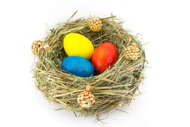 Ovos da páscoa coloridos no ninho da grama com colisões foto de stock royalty free