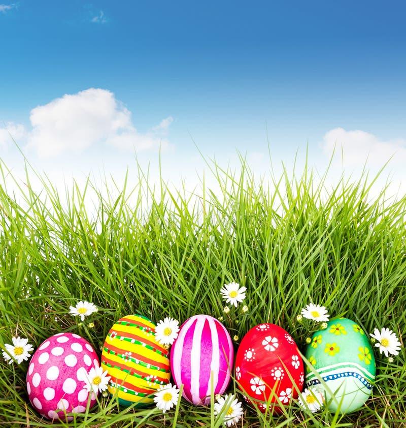 Ovos da páscoa com a flor na grama verde fresca foto de stock