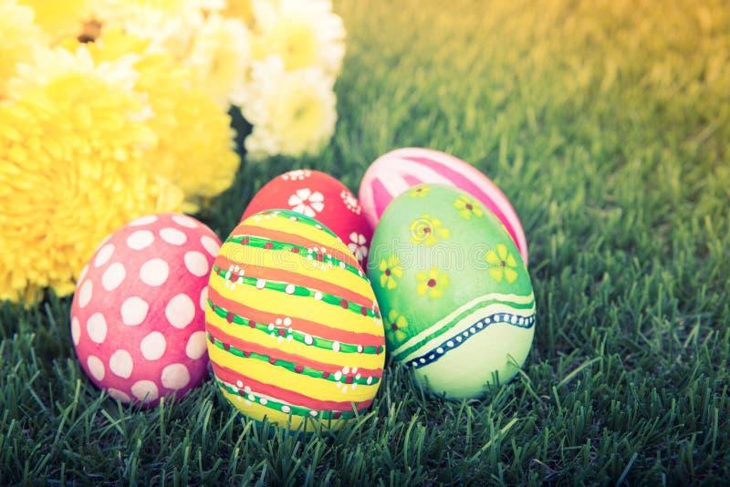 Ovos da páscoa com a flor no verde fresco (PR filtrado da imagem imagem de stock