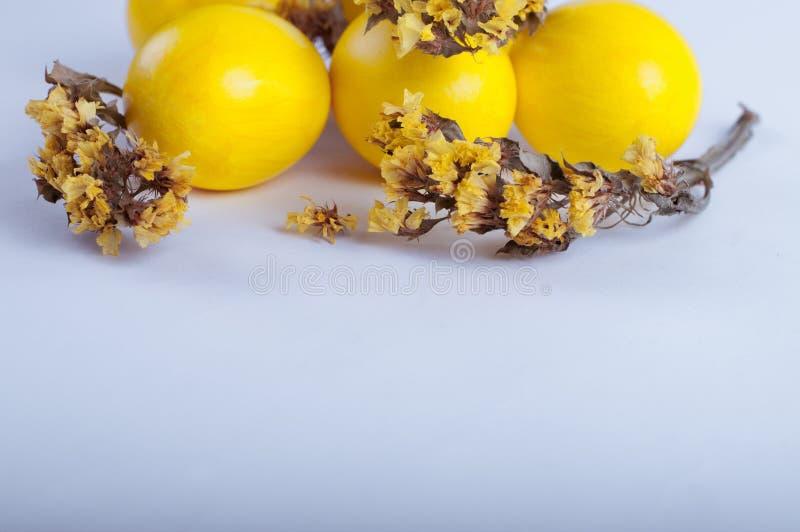 Ovos da páscoa com flores em um fundo branco fotos de stock