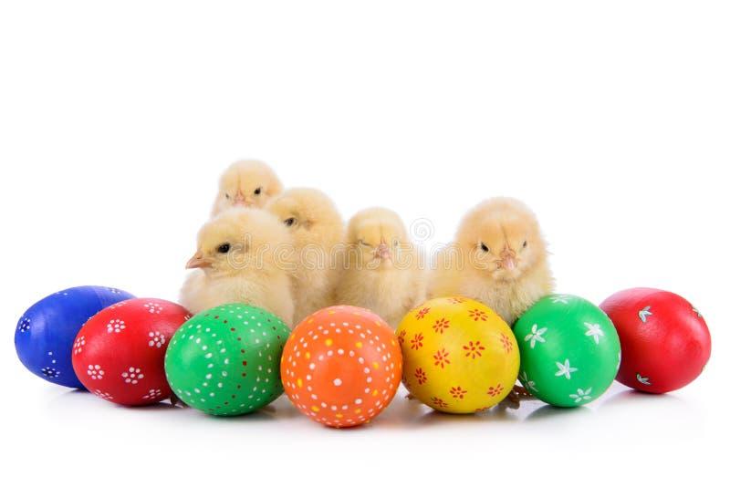 Ovos da páscoa com galinhas recém-nascidas fotos de stock