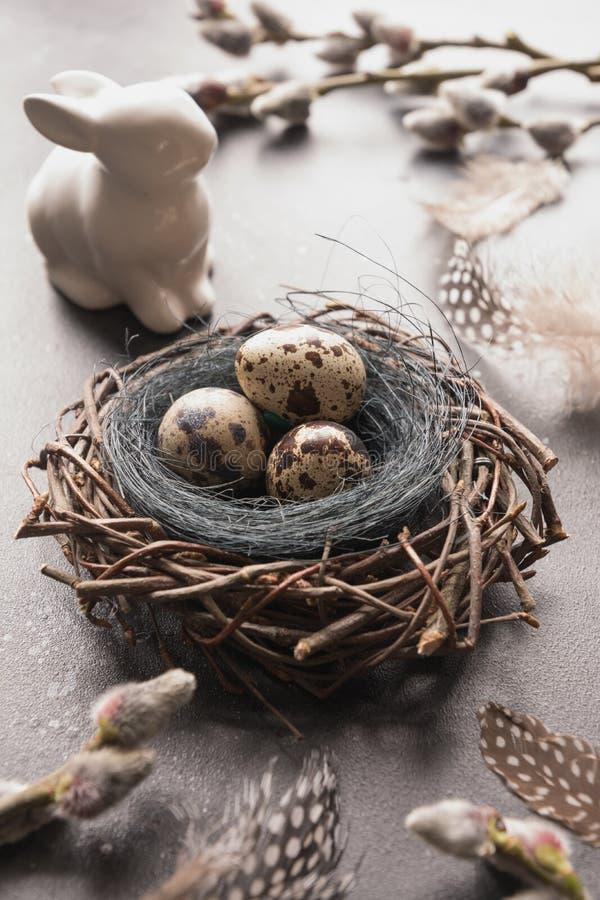 Ovos da páscoa das codorniz no salgueiro do ninho, do coelho e da mola na tabela do vintage imagem de stock