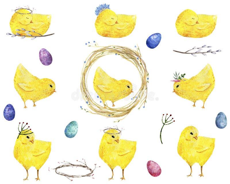 Ovos da páscoa e pintainhos pequenos Escova da aquarela, fundo bonito do feriado de Greate dos pássaros da exploração agrícola ilustração do vetor