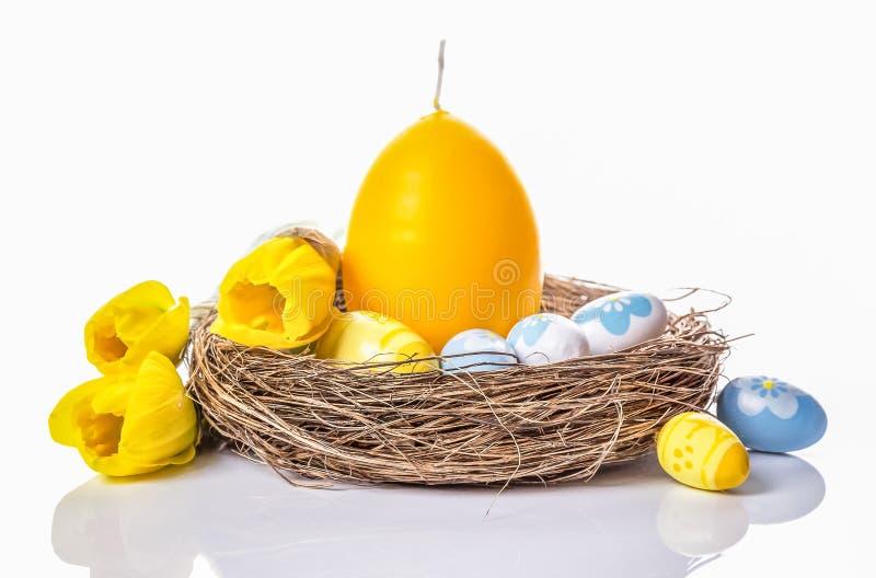 Ovos da páscoa, vela do ovo no ninho e narcisos amarelos em um fundo branco foto de stock royalty free