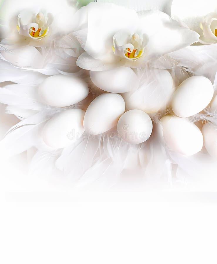 Ovos da p?scoa brancos e projeto azul do feriado do tema do fundo dos cumprimentos da ilustra??o da ?rvore de salgueiro vermelho fotografia de stock