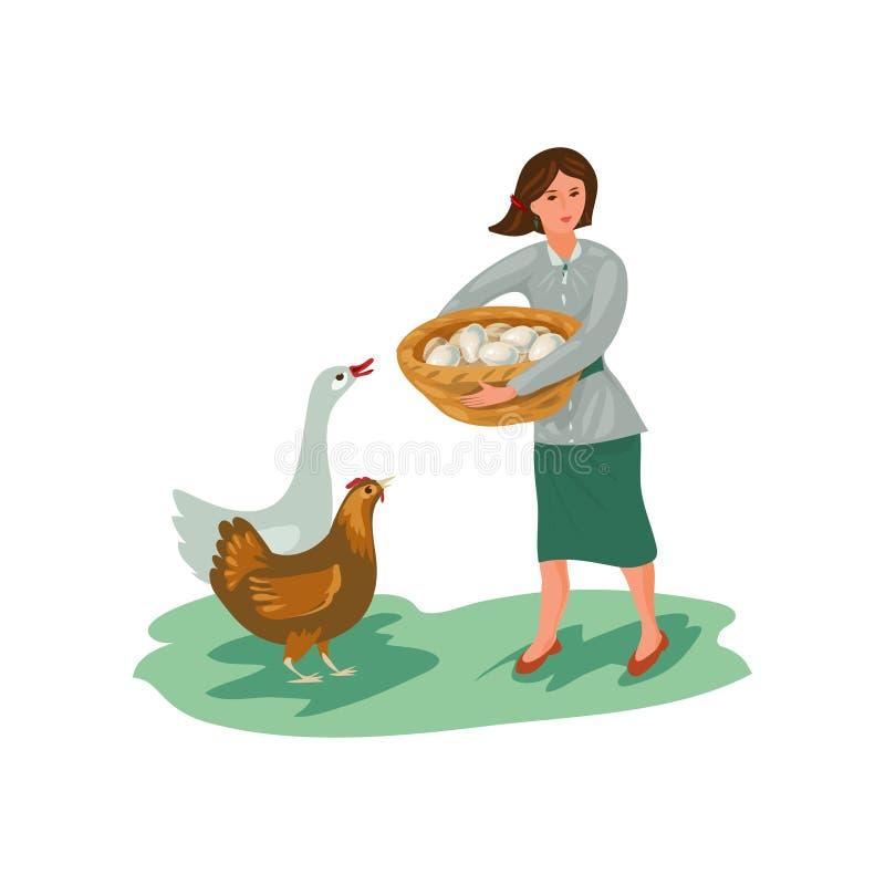 Ovos da tomada da mulher do fazendeiro na cesta da galinha e do ganso ilustração stock