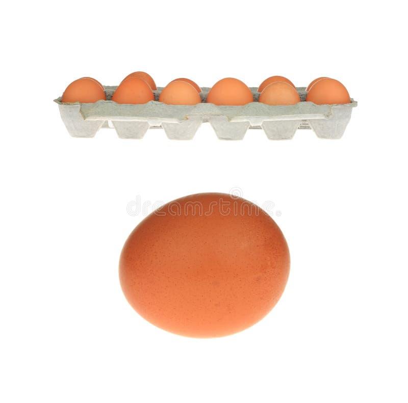 Ovos de Brown fotos de stock royalty free