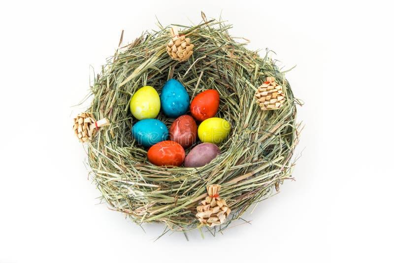 Ovos de codorniz coloridos de easter no ninho da grama com colisões imagens de stock