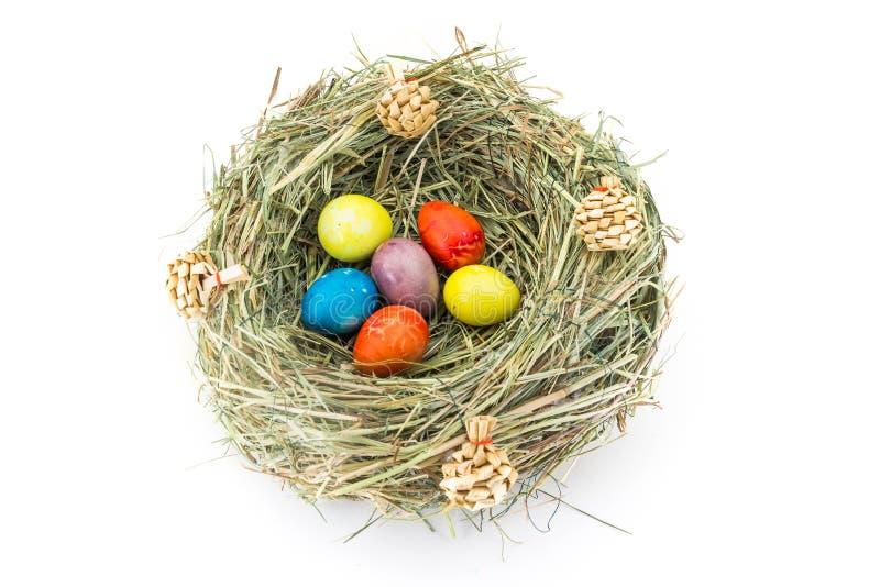 Ovos de codorniz coloridos de easter no ninho da grama com colisões imagem de stock