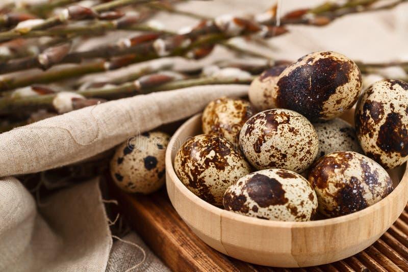 Ovos de codorniz com ramos do salgueiro Easter feliz imagens de stock