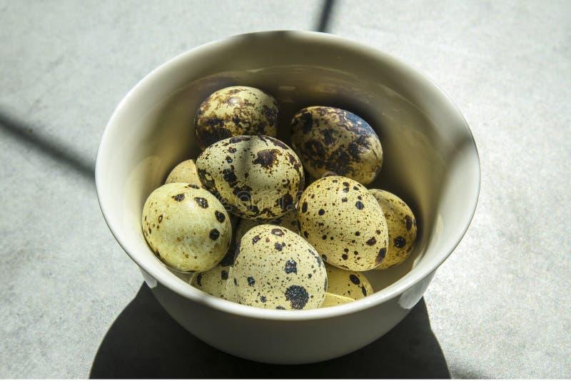Ovos de codorniz em uma placa branca pequena em um fundo concreto, estando na tabela fotos de stock