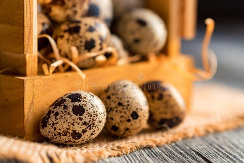 Ovos de codorniz na superfície de madeira marrom velha foto de stock royalty free