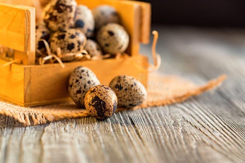 Ovos de codorniz na superfície de madeira marrom velha imagens de stock royalty free