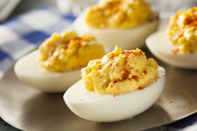 Ovos de Deviled saudáveis como um aperitivo imagens de stock royalty free