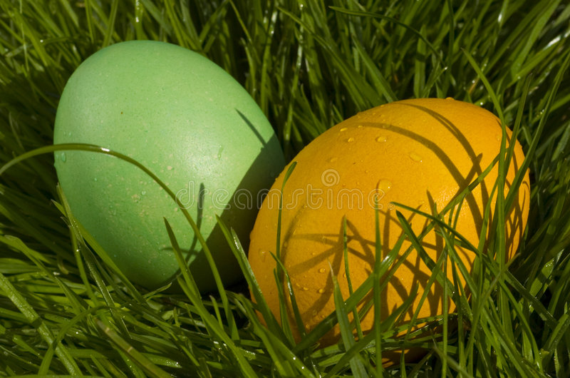 Ovos de Easter foto de stock royalty free