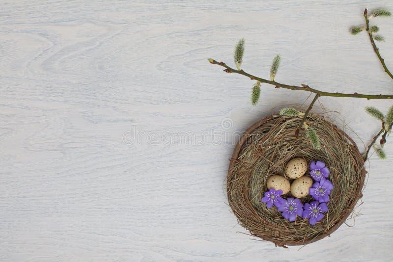 Ovos de Easter coloridos em uma cesta fotos de stock royalty free