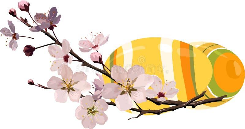 Ovos de Easter com flor de cereja ilustração do vetor