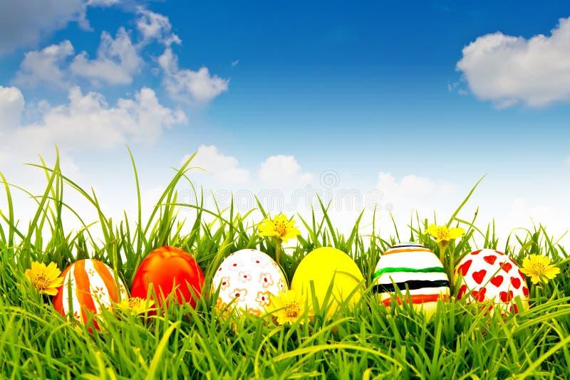 Ovos de Easter com a flor na grama verde fresca. imagem de stock royalty free