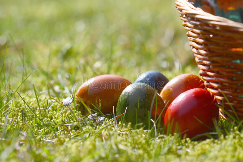 Ovos de easter decorados na grama foto de stock