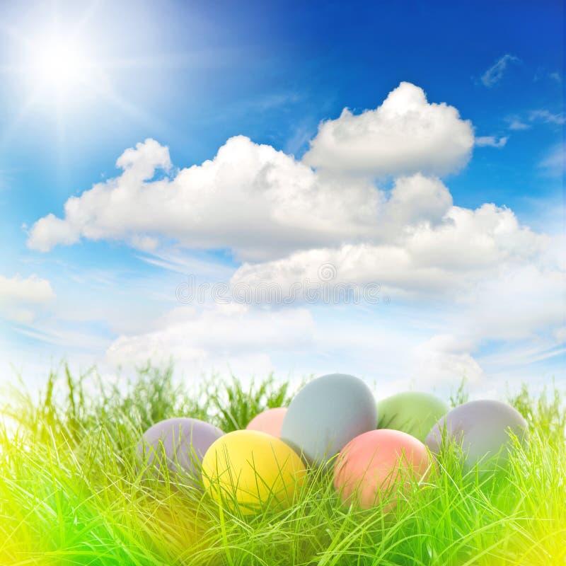 Ovos de Easter na grama Céu azul ensolarado com raios de sol e pasto claro foto de stock royalty free